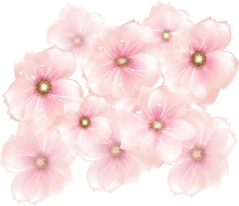 Home Design Decor Fun pink flowers transparent clipart gallery yopriceville