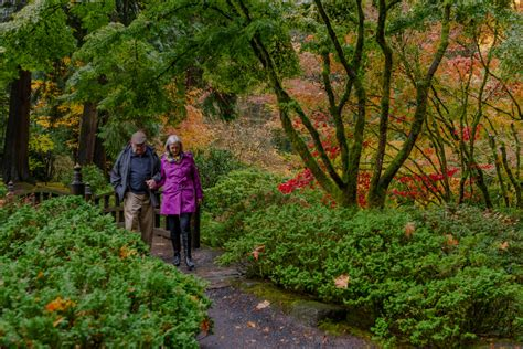 Japanese Garden Hours by Member Evening Hours Portland Japanese Garden