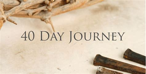 jesus every day a journey through the bible in one year books ideas for 40 days of fasting or lent womens bible cafe