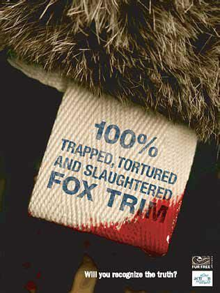 The Anti Fur Mob They Can P by 10 Best Stop Factory Farming Images On Farm