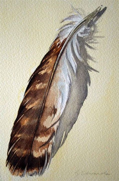 hawk feather tattoo hawk feather tattoos