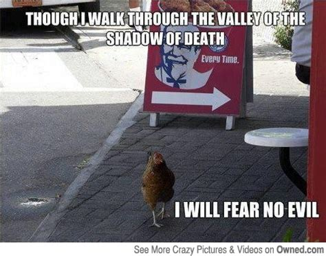 Kfc Chicken Meme - chicken kfc bravery meme image 675441 on favim com