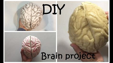 How To Make A Paper Brain - how to make a brain project diy brain 42