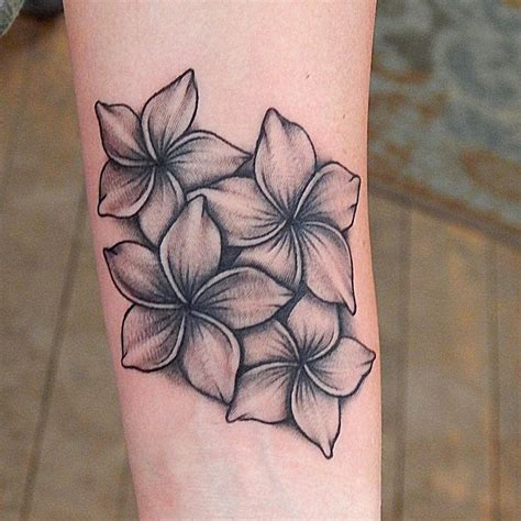 plumeria flower tattoo designs 17 best ideas about plumeria on