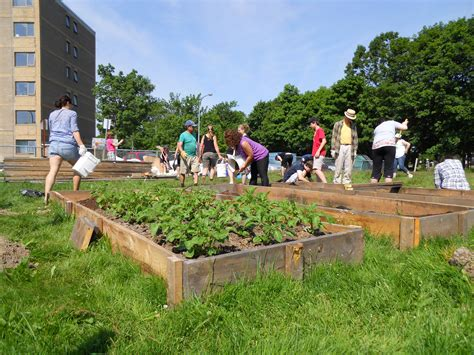 Starting A Community Garden 10 steps to starting a community garden halifax garden network