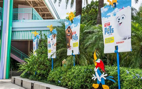 orlando puppies universal orlando up the secret of pets comes to universal studios florida
