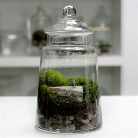 70 best terrarium images on pinterest miniature gardens landscaping and mini gardens