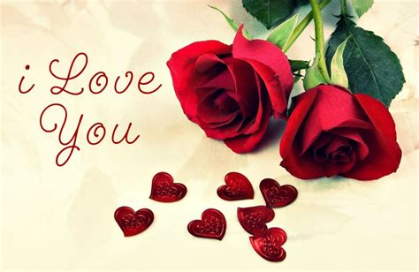 love you heart and roses funmozar i love you roses and hearts cliparts co