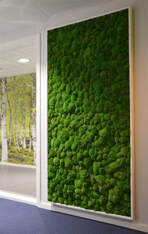 interior plant wall moss walls inside your home or office are easy to install