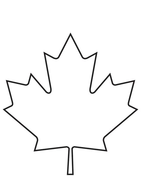 coloring page of a maple leaf maple leaf coloring page download free maple leaf