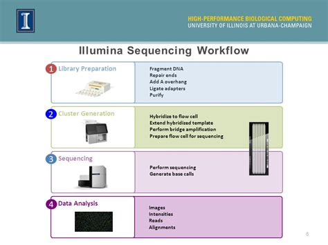 illumina sequencing workflow rna seq and transcriptome analysis ppt