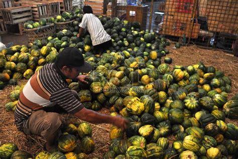 Kerang Di Pasar Kramat Jati blewah buah yang digemari di bulan ramadhan republika