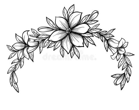 beautiful graphic drawing lily branch with leaves stock