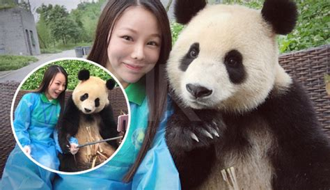 Overall Anak Kecil Panda panda pun pandai posing untuk gambar selfie dengan pelancong the reporter