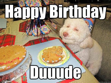 Birthday Cake Dog Meme - happy birthday dog cake memes