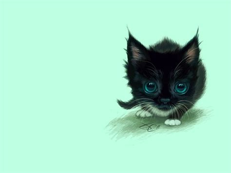 cute black cat minimal cartoon hd wallpapers book