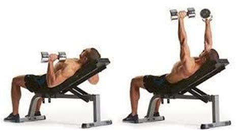 low incline bench low incline dumbbell press chest pinterest