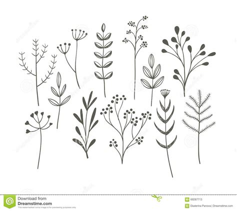 doodle draw free doodle grass set stock vector image 69287713