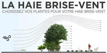 les plantes permaculturedesign