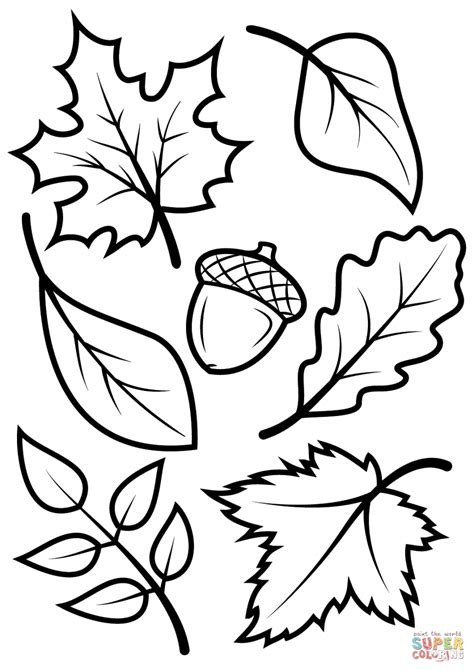 rainforest leaves coloring page jungle leaves coloring pages go digital with us