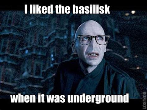 Harry Meme - 18 jokes only quot harry potter quot fans will find funny