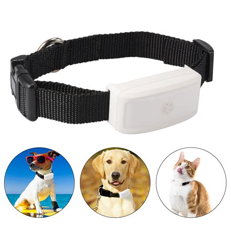puppy tracker tkstar pet cat tracker collar gps wifi real time mini tracking device ps114 ebay