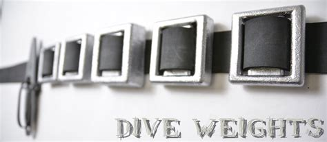 dive weights spearfishing dive weights neptonics