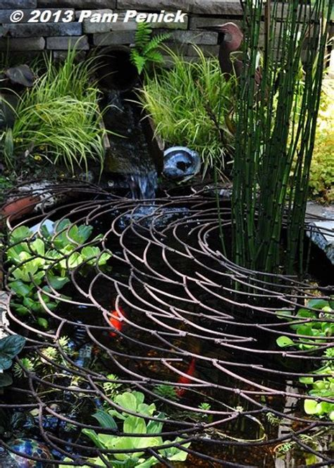 How To Keep Raccoons Out Of Your Garden by 17 Best Ideas About Goldfish Pond On Pond
