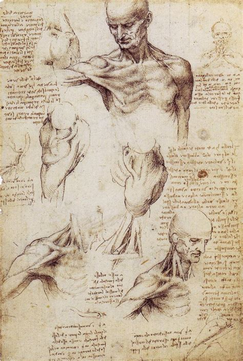 Drawing Human Anatomy by 301 Moved Permanently