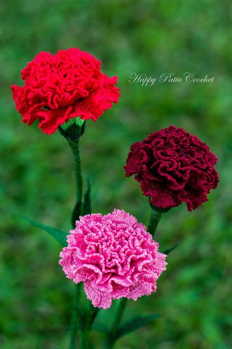 Crochet Carnation Pattern by Happy Patty Crochet