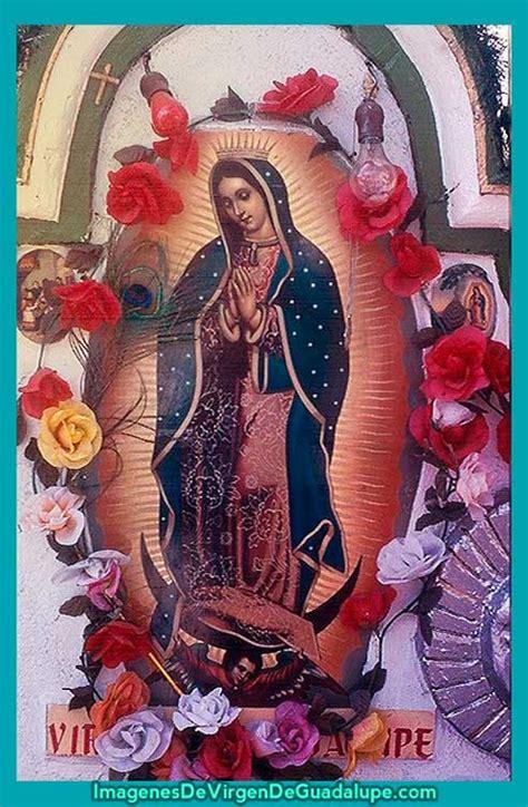 imagenes te amo guadalupe sant 237 sima virgen de guadalupe imagenes de virgen de