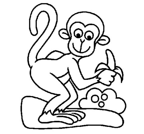 jungle monkey coloring pages monkey coloring page coloringcrew com
