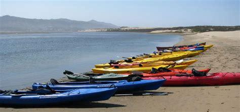 morro bay boat tours morro bay california guided kayak tours