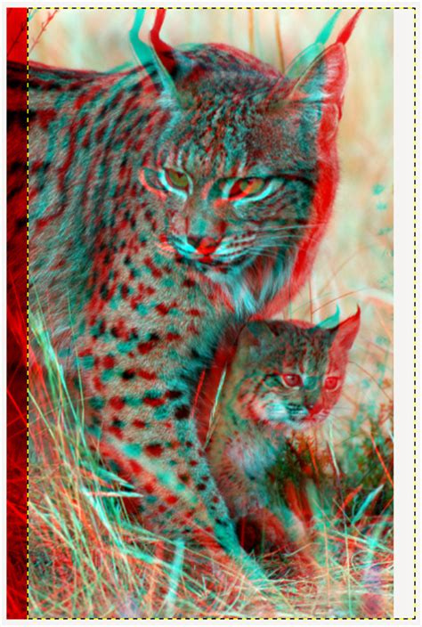 imagenes en 3d para ver con lentes de cine fresh penguin crea im 225 genes 3d con gimp para ver con