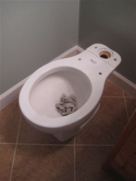 Replacing A Toilet Install A Ceramic Tile Floor In The Bathroom The Family