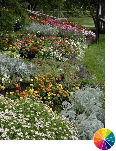Image Flowers Garden Explore Cornell Home Gardening Using Color In Flower Gardens