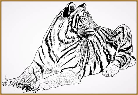 imagenes zen para imprimir buscar dibujos de tigres para pintar e imprimir archivos