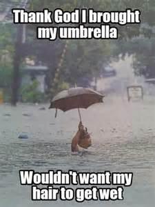 Flash Cards Real Estate Umbrella Meme Funny Pictures Quotes Memes Jokes