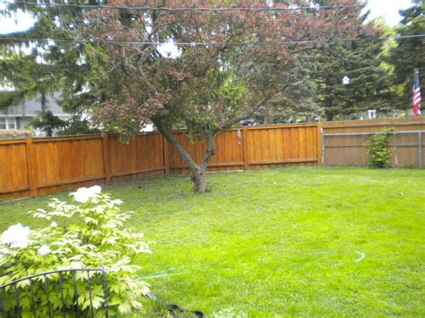 Fenced In Backyard by Sold In 4 Days Beautiful Split Level In South Villa Park
