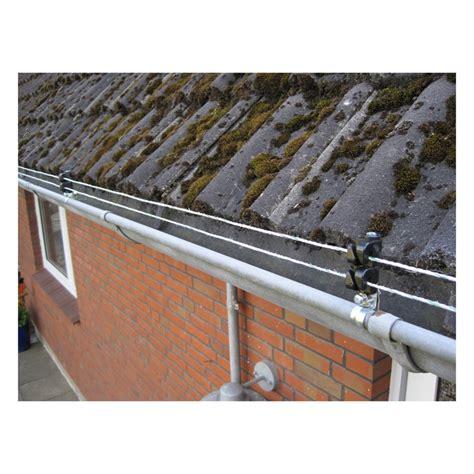 marder im dach was tun 2284 was tun gegen marder auf dem dachboden awesome auf einem
