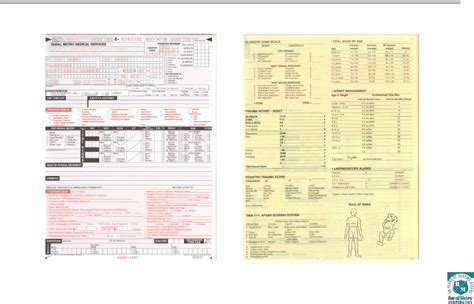 patient care report template 16