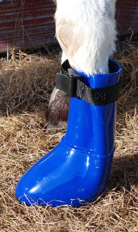 davis sheep  goat boot davis manufacturing goat sheep health care hoof care