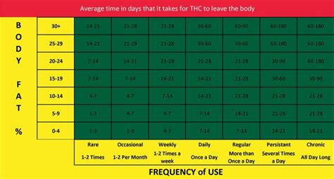 how long how long does thc stay in your system