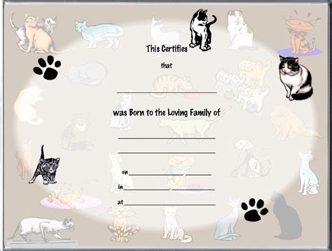 image result for cat pedigree certificate template