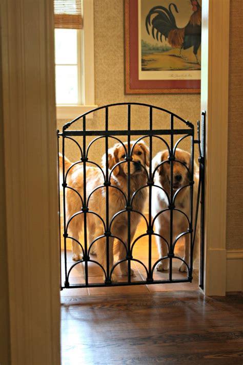 custom dog gate   beautiful goldens antietam