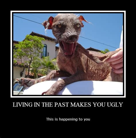 Ugly Dog Meme - ugly dogs with quotes quotesgram