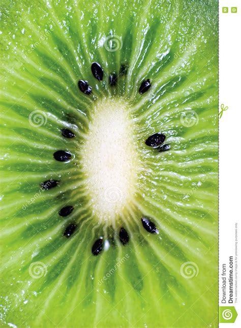 free detailed macro images and stock photos freeimages fresh green kiwi fruit macro closeup w seeds royalty free stock image cartoondealer 6615346