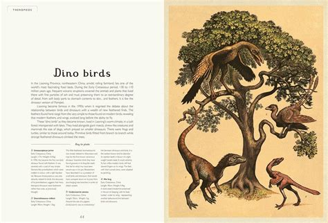dinosaurium welcome to the beautiful books for children and babies scout co page 2