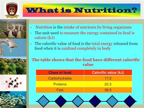 what is in food nutrition chapter 2 form 5