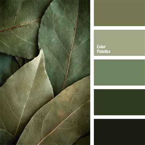 best 25 olive green ideas on living room ideas olive green army green and olive